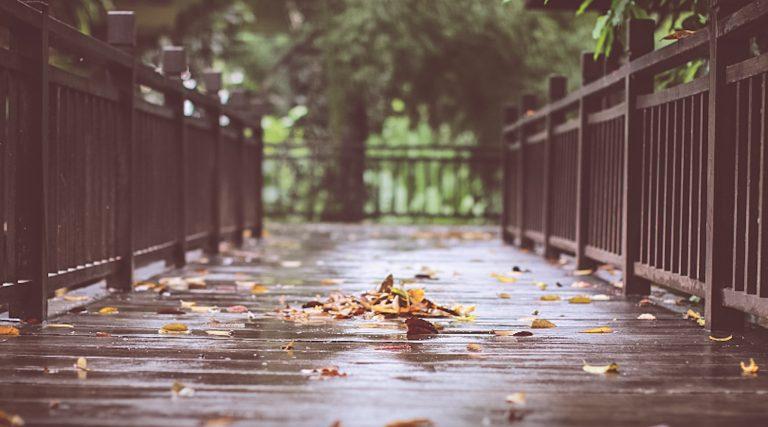 cosa fare ad amsterdam quando piove
