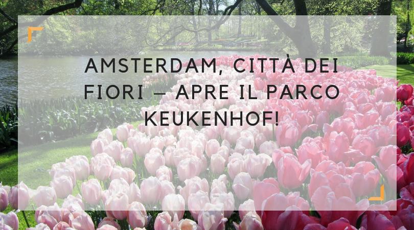apre keukenhof_parco dei tulipani ad amsterdam