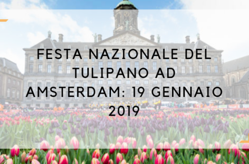 giornata del tulipano amsterdam 2019
