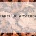 ia_parchi di amsterdam_autunno