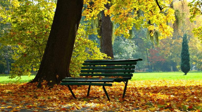 parchi di amsterdam